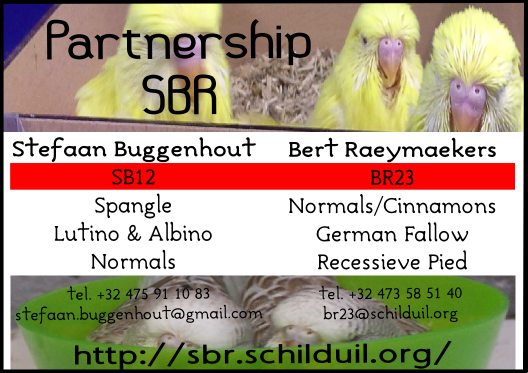 Partnership SBR1